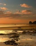 szeroki haven słońca zdjęcia royalty free
