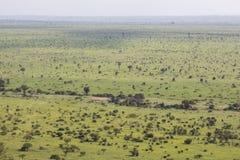 Szeroki i zielony krajobrazowy widok Kruger park narodowy Fotografia Stock