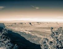 Szeroki kąt Grodowa dolina, Utah zdjęcia royalty free