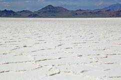 Szeroki krajobraz Wielka Salt Lake pustynia Obraz Royalty Free