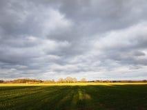 Szeroki krajobraz z żółtym horyzontem i chmurami Fotografia Stock