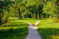 Szeroki pieszy ślad w parku dzieli w dwa, rozpraszający w różnych kierunkach obraz royalty free