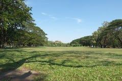 Szeroki pole ŻADNY Wachirabenchathat park 2 zdjęcia royalty free
