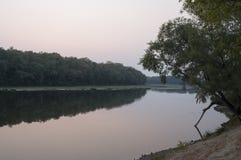 Szeroki rzeczny spływanie przez zielonego lasowego spadek równo Odbicia drzewa w uspokajają wodę zmierzch Zdjęcia Royalty Free