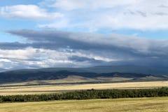 Szeroki step z żółtą trawą pod niebieskim niebem z bielem chmurnieje Sayan góry Syberia Rosja Zdjęcie Stock