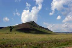 Szeroki step z żółtą trawą pod niebieskim niebem z bielem chmurnieje Sayan góry Syberia Rosja Obraz Stock