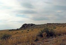 Szeroki step z żółtą trawą pod niebieskim niebem z bielem chmurnieje Sayan góry Syberia Rosja Zdjęcie Royalty Free