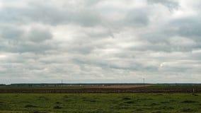 Szeroki teren w wsi podczas chmurnego dnia, upływ zbiory wideo