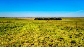 Szeroko otwarty ziemia uprawna wzdłuż R39 w Vaal Rzecznym regionie południowy Mpumalanga Obraz Royalty Free