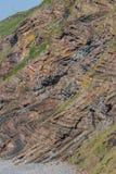 Szewronu falcowanie w geological warstwach przy Millook przystanią blisko Pęka Zdjęcie Stock