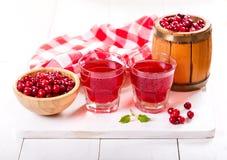 Szkła cranberry sok z świeżymi jagodami Fotografia Royalty Free