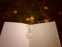 Szkła kłaść na otwartej książce z ogrodowymi kwiatami w tle zdjęcia royalty free