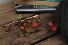 Szkła, szalik, książka, na stole Fotografia Royalty Free