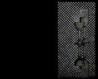 Szkła szampan prowadzący panelu tło Zdjęcia Stock