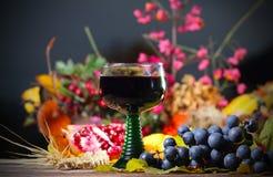 Szkło czerwone wino przy jesień wieczór Obraz Stock