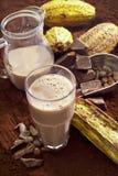 Szkło gorąca czekolada, kakaowe fasole, kakaowy proszek i kakao owoc, Fotografia Stock