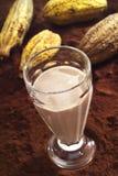 Szkło gorąca czekolada, kakaowy proszek i kakao owoc, Zdjęcie Stock
