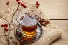 Szkło gorąca parująca herbata fotografia royalty free