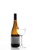 Szkło i butelka biały wino Obraz Stock