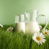 Szkło mleko i słój na kwiat łące Fotografia Stock