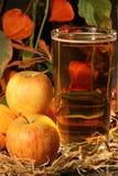 Szkło otaczający jabłkami i jesieni ulistnieniem cydr obraz stock