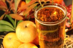 Szkło otaczający jabłkami i jesieni ulistnieniem cydr fotografia stock