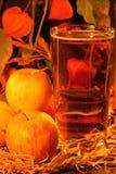 Szkło otaczający jabłkami i jesieni ulistnieniem cydr zdjęcia royalty free