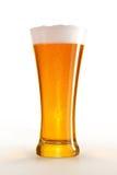 Szkło piwo zdjęcia royalty free
