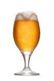 Szkło piwo z pianą Obraz Royalty Free