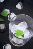 Szkło z lodem i mennicą na czarnym tle Zdjęcia Royalty Free