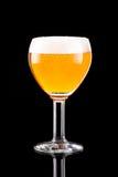 Szkło z piwem obrazy royalty free