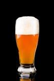 Szkło z piwem fotografia stock