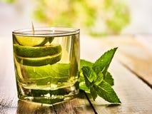 Szkło z zielonym przejrzystym wapna mohito napojem i mennicą Zdjęcia Royalty Free