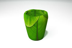 Szkło zielony bananowy liść Fotografia Royalty Free
