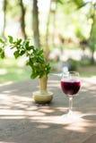 Szkła gronowy sok Zdjęcie Royalty Free