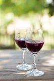 Szkła gronowy sok Obraz Stock