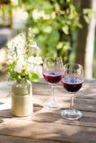 Szkła gronowy sok Zdjęcia Royalty Free