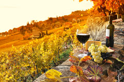Szkło czerwone wino Zdjęcia Royalty Free