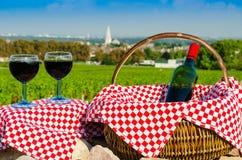 Szkło czerwony winograd, Burgundy, France Zdjęcia Royalty Free