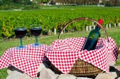 Szkło czerwony winograd, Burgundy, France Zdjęcie Stock