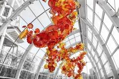 Szkło kwiaty Fotografia Stock