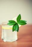 Szkło lemoniady lub cytryny kabaczek jako lato napój quench y Obrazy Stock