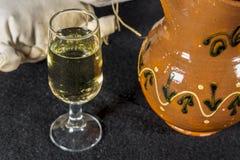 Szkło Manzanilla, fino sherry'ego wino Fotografia Stock