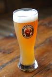 Szkło Niemiecka banatka piwny Franziskaner Weissbier Obrazy Royalty Free