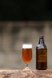 Szkło piwo i butelka na drewno stole Obraz Stock