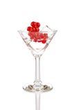 Szkło z kostkami lodu i cranberry Fotografia Royalty Free