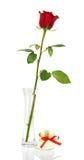 Szkarłat róży w wazie i duchach z czerwonym faborkiem zdjęcie royalty free