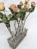 Szklana butelka z suchymi różami obrazy royalty free
