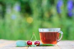 Szklana filiżanka herbaciane i czerwone dojrzałe czereśniowe owoc z szypułami Obrazy Royalty Free