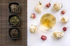 Szklana filiżanka zielona herbata z suchymi różami wokoło, matą z różnymi rodzajami zielona herbata i Porcelanowy ` s pojęcie Fotografia Royalty Free